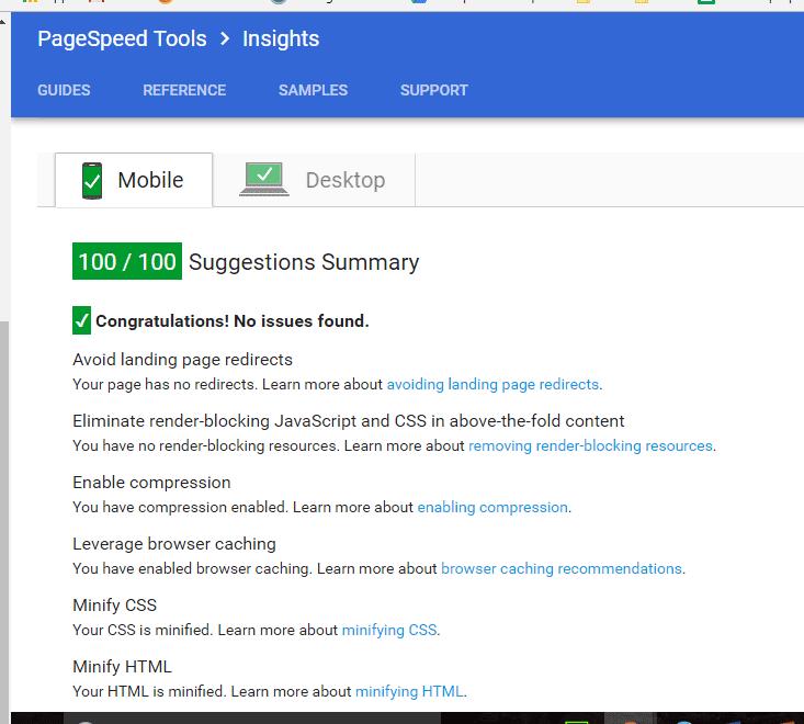 Google PageSpeed 100